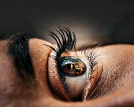 picture in cornea